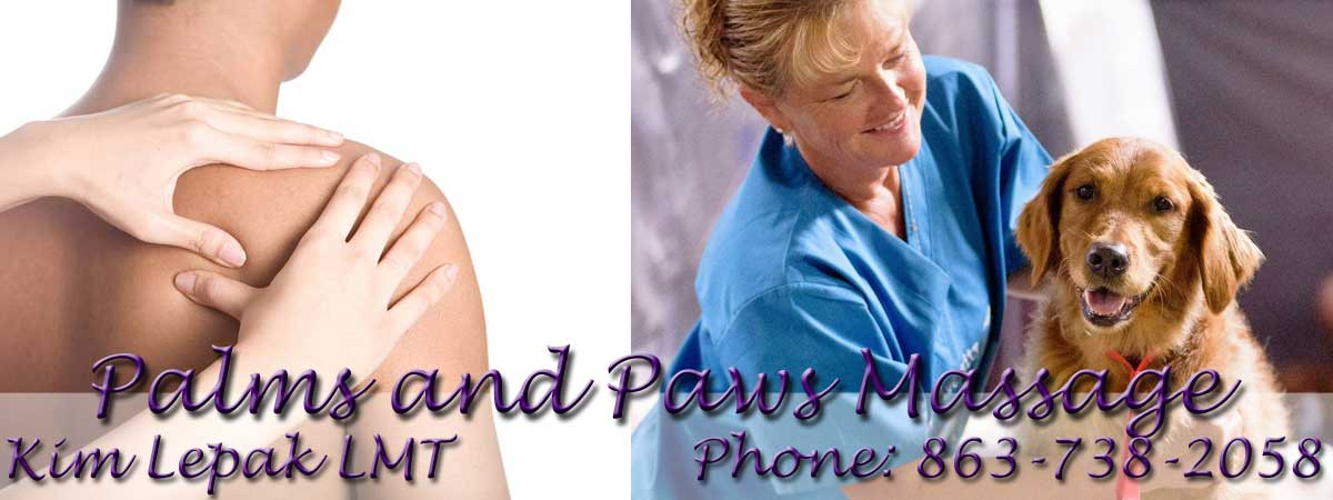 Certified Pregnancy Massage Palms And Paws Massage In Winter Haven Fl
